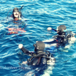 ReefCheck.org Volunteer Divers
