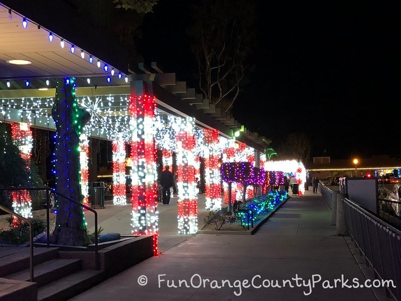dana point harbor holiday lights view from outside the candy cane walkway