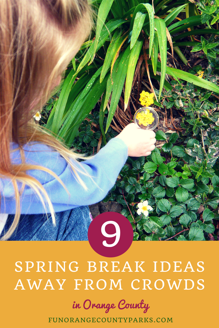 spring break ideas away from crowds pin image