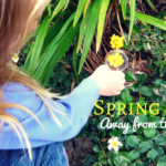 9 Ideas for Spring Break Family Activities Away From The Crowds