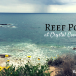 Reef Point at Crystal Cove State Park