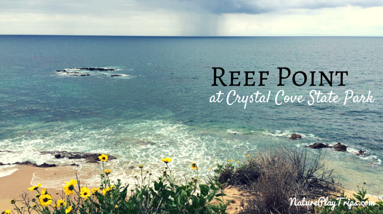 Reef Point Crystal Cove Reef Point at Crystal Cove