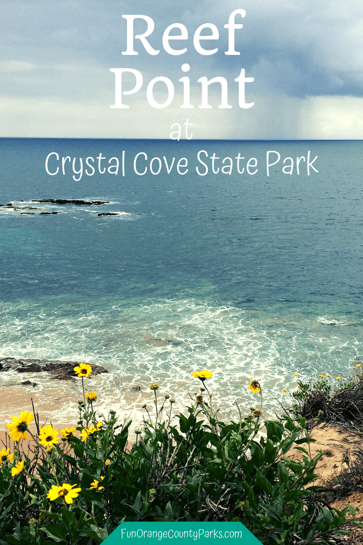 Reef Point Crystal Cove State Park | Ocean Views with Native Flowers