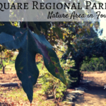 Mile Square Park Nature Area