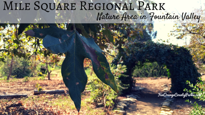 Mile Square Park Nature Area