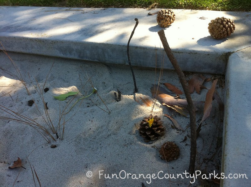 parks and beaches parking passes - sandbox with pine cones and sticks