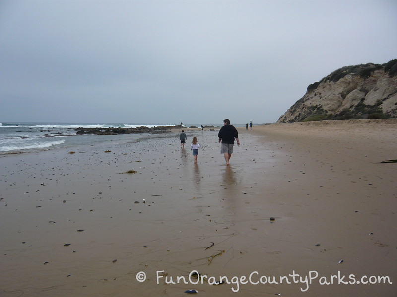 father and two small children walking along shoreline facing away from camera at empty beach with tidepools ahead at Crystal Cove State Park