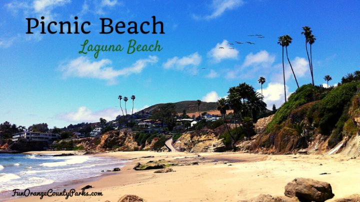 Picnic Beach in Laguna Beach for Sandcastle Building and Dolphin Spotting