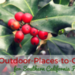 Outdoor-Places-to-Go Gifts for Southern California Families