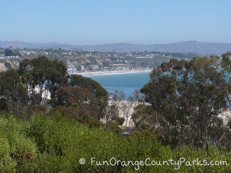 peekaboo view of Doheny Beach from the bluff near the park