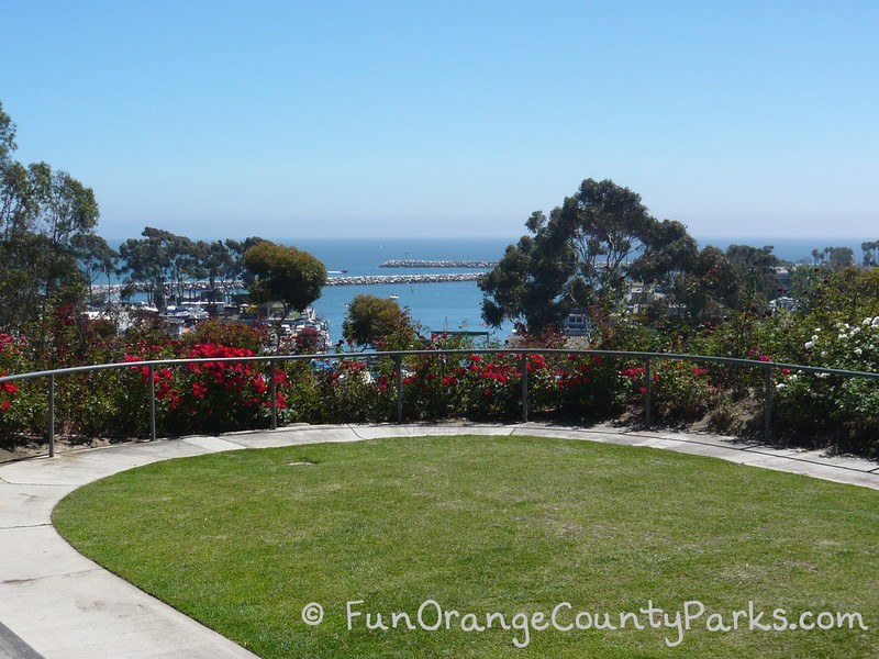 sunken rose garden with view of the harbor which would be a nice place to have a wedding at Lantern Bay Park in Dana Point