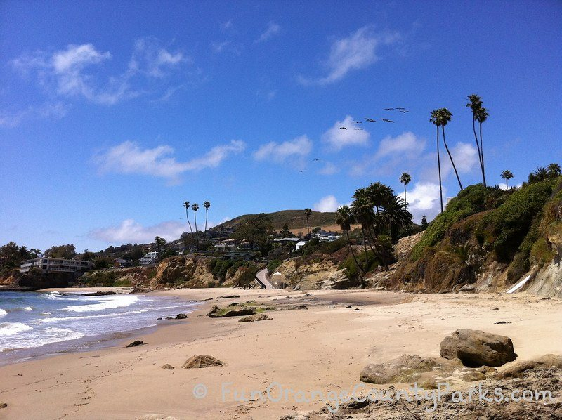 what to bring to the beach - ocean waves with palm trees and beach rocks in the sand