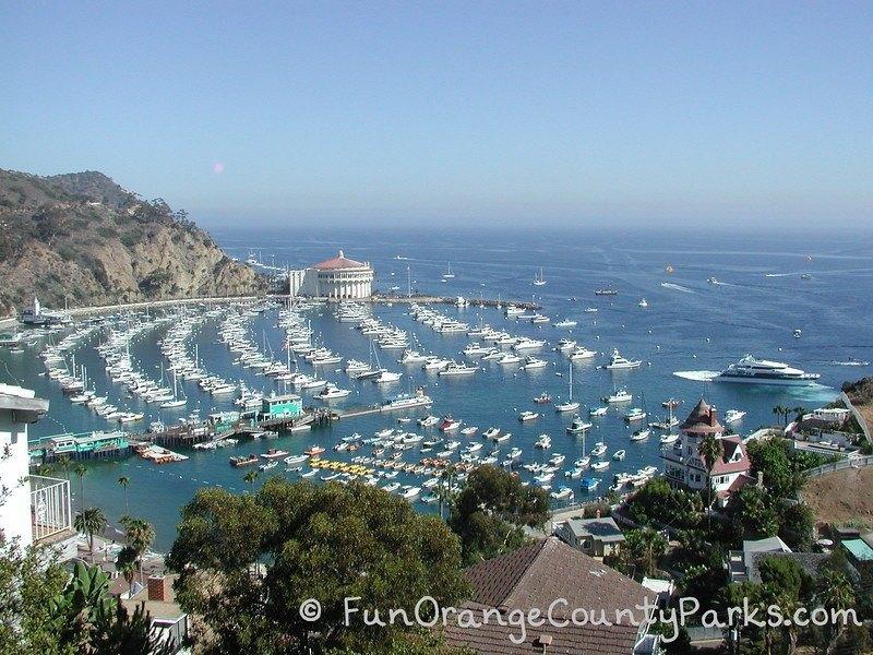 Avalon Harbor at Catalina Island aerial view