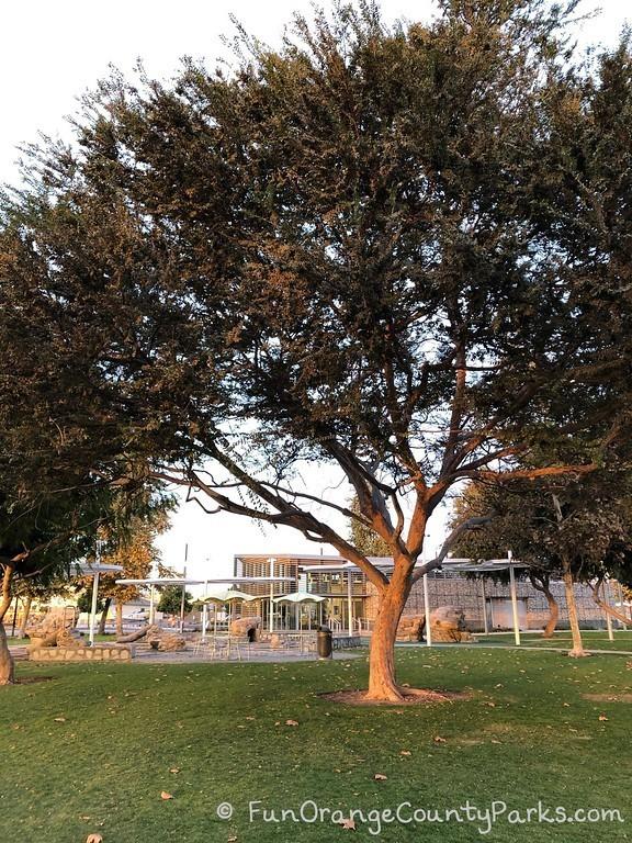 oc great park trees