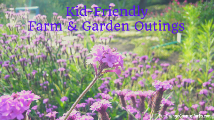 7+ Kid-Friendly Farm and Garden Outings