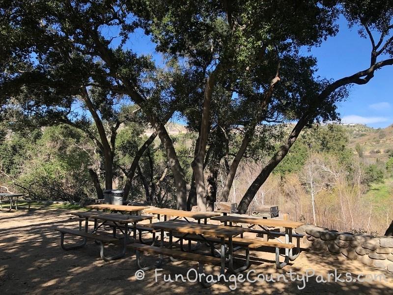 santiago oaks picnic area