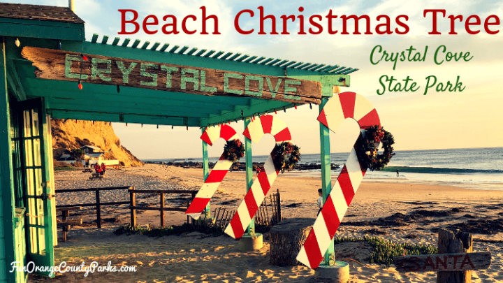 Beach Christmas Tree at Crystal Cove