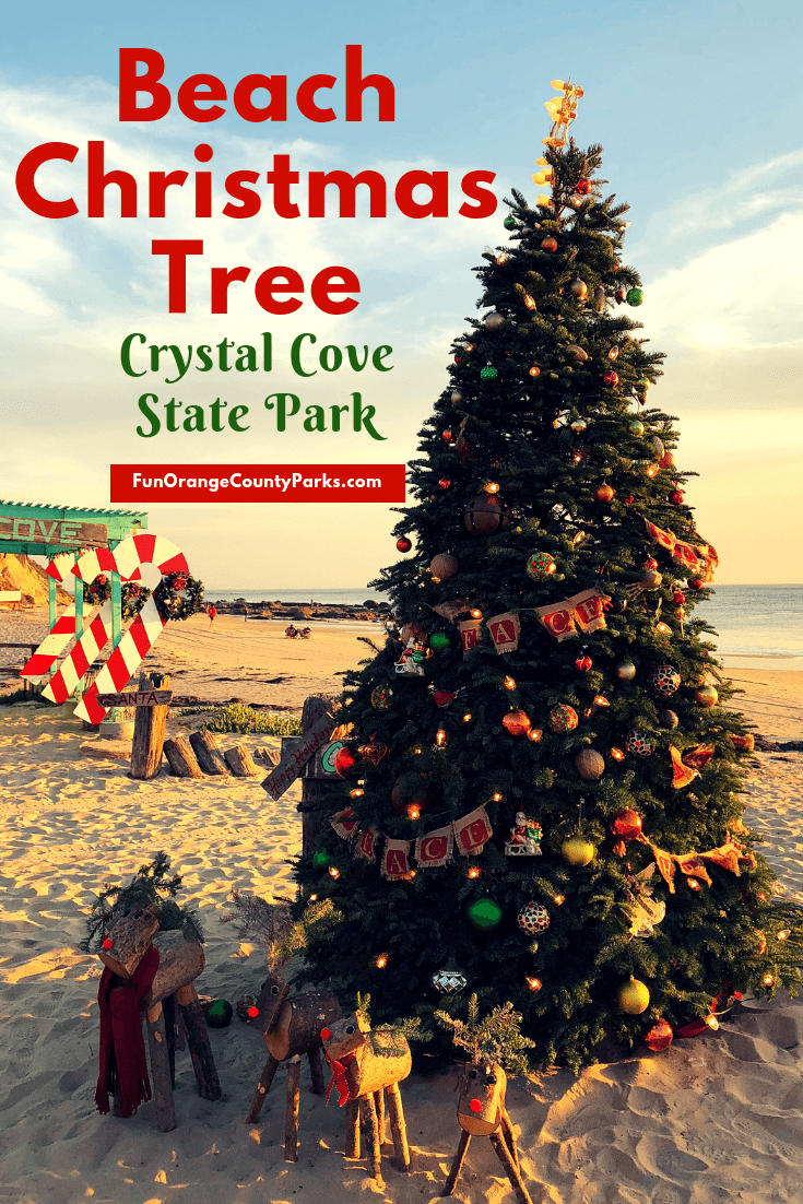 Beach Christmas Tree at Crystal Cove State Park