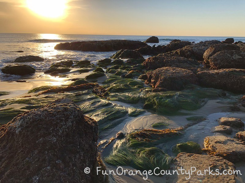 Crystal Cove tidepools and sunset
