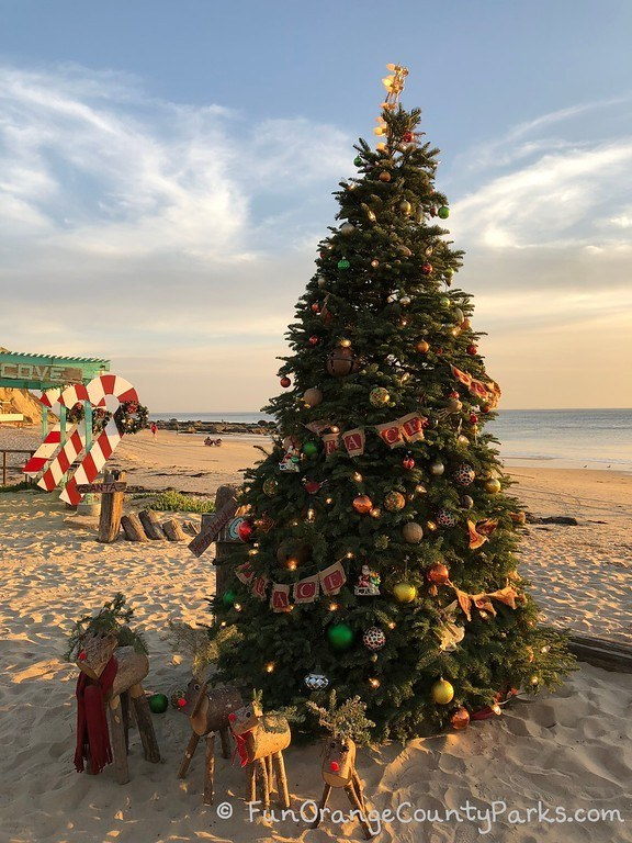 Beach Christmas tree Crystal Cove with reindeer and view of tidepools