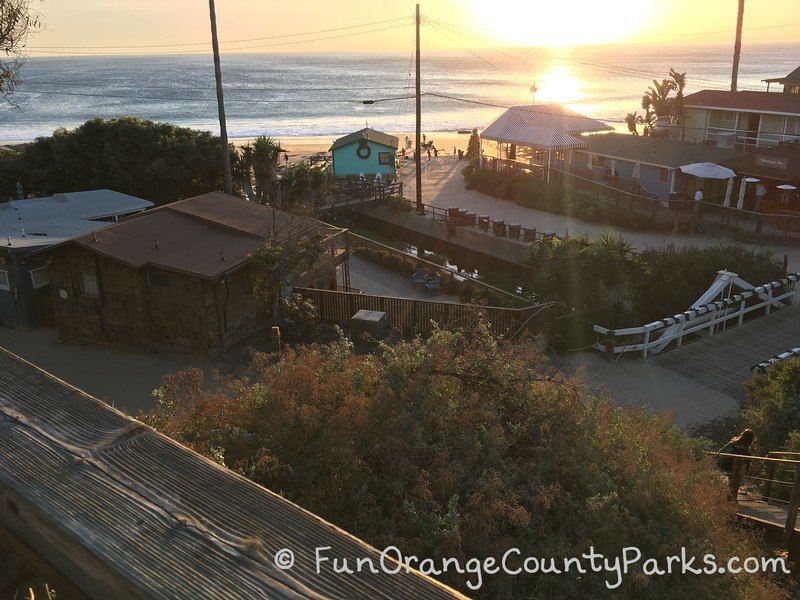 Beach Christmas tree Crystal Cove view from Rubys