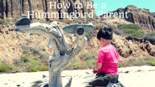 how to be a hummingbird parent featured photo