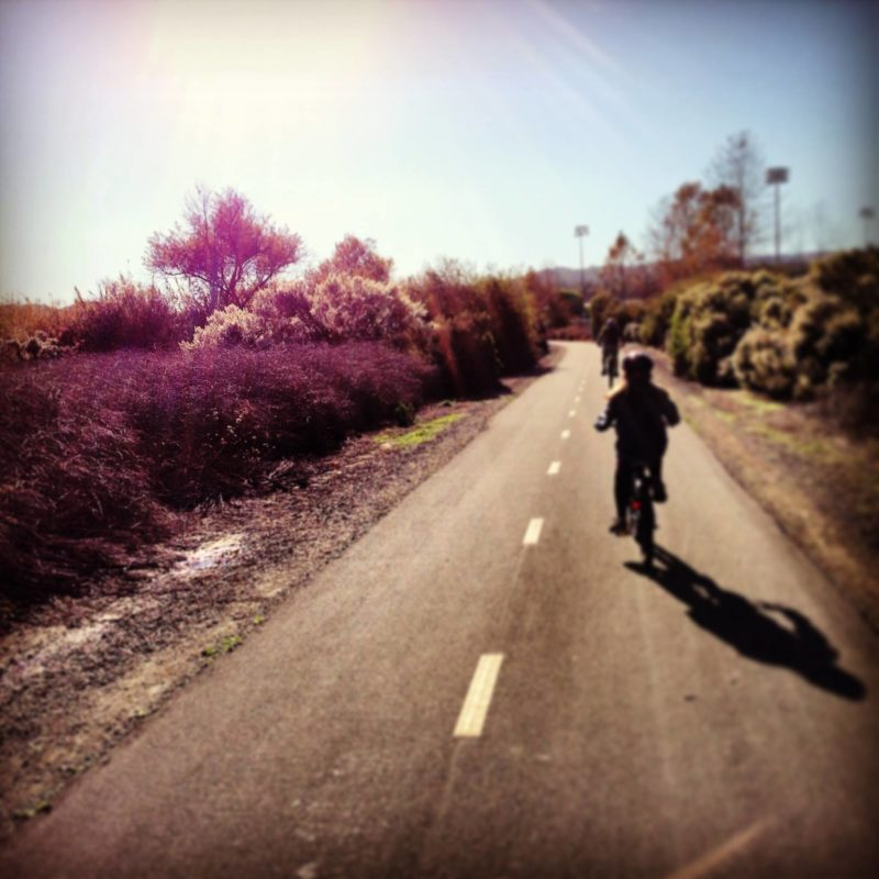 flat biking - kids on bikes on a flat bike trail