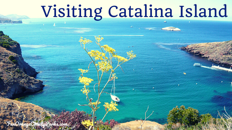 How to Visit Catalina Island: A Brief Tutorial on the Basics