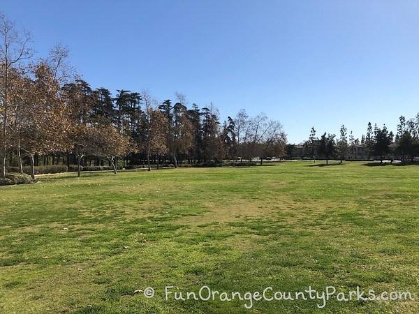 cedar grove park tustin grassy area
