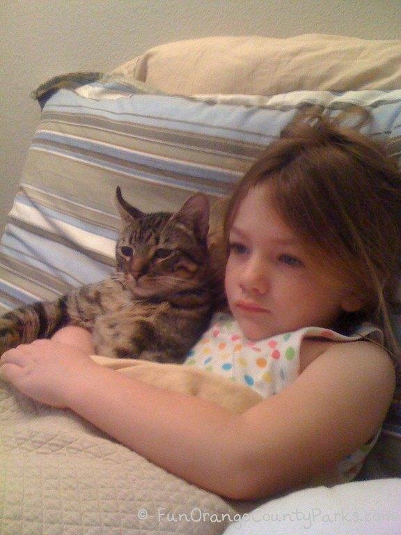 richard louv nature books - little girl snuggling with a kitten