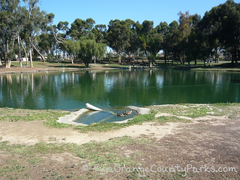 tri-city park lake with ducks