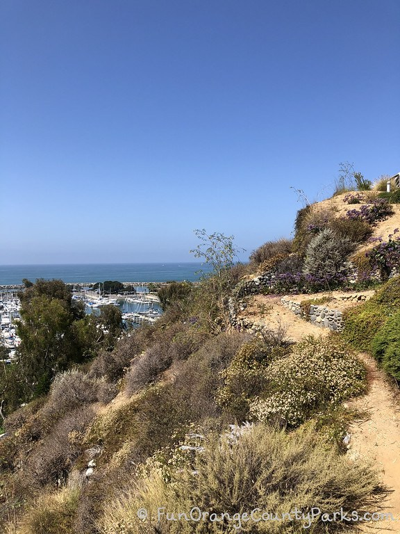 rock path along dana point bluff top trail