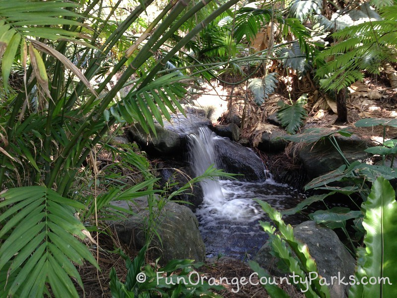 small waterfall flowing over rocks with palms and ferns