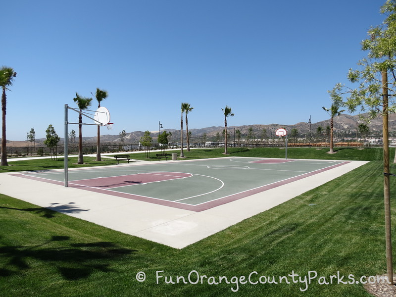 basketball court surrounded by lawn and palm trees with foothills in the distance