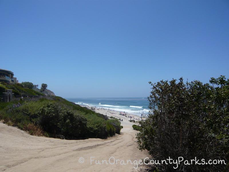dirt path between bushes down to Salt Creek Beach