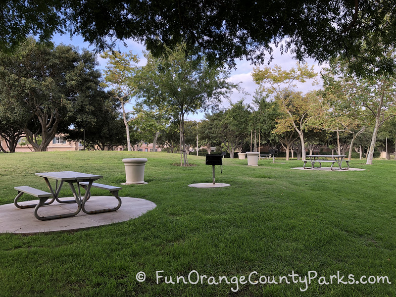 metal picnic tables on concrete pads in a grassy area under trees with trash receptacles and charcoal grills sprinkled throughout