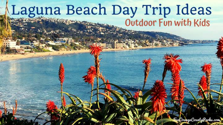 Laguna Beach Day Trip Ideas for Families